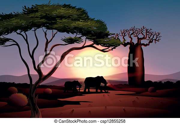 A sunset at the desert with animals - csp12855258