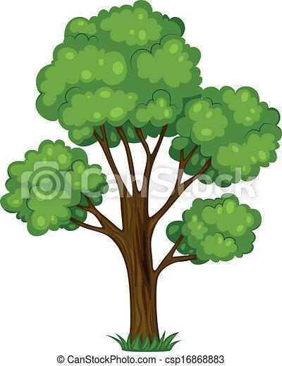 A tall tree - csp16868883