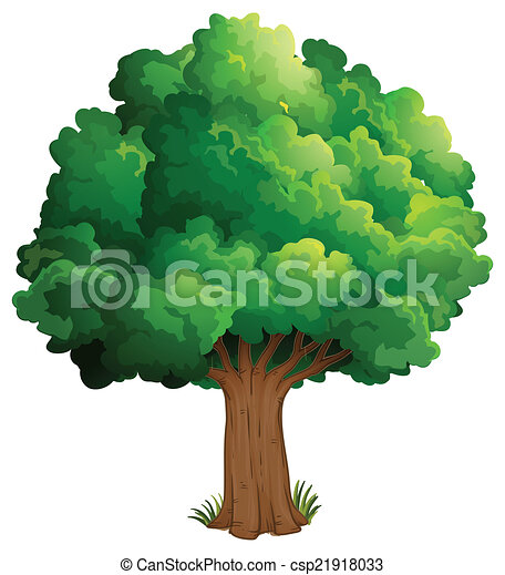 A tree at the forest - csp21918033