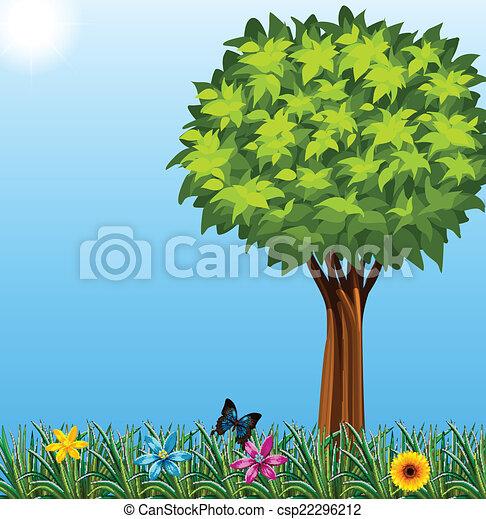 A tree at the garden - csp22296212