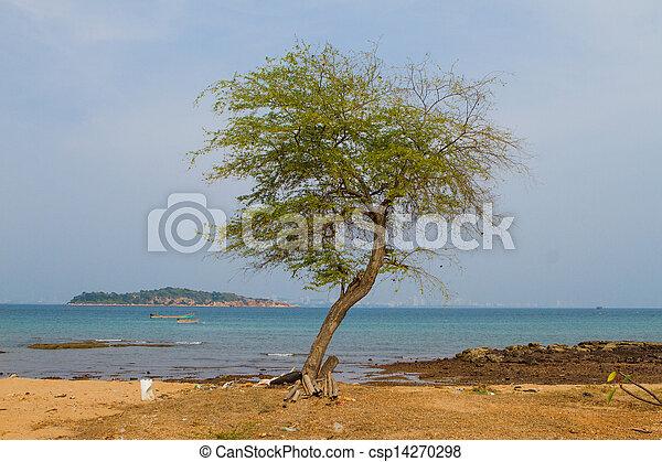 A Tree - csp14270298