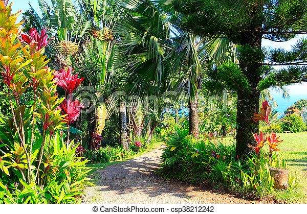 A tropical garden . garden of eden, maui hawaii. A tropical garden ...