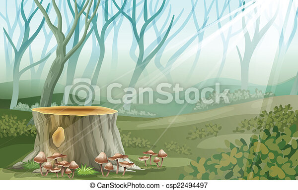 A trunk at the forest - csp22494497