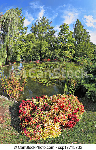 A wonderful pond with lilies - csp17715732