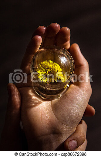 A wonderful wonderful world in the palm of your hand. A piece of nature under glass. The concept of a child's play with glass. - csp86672398