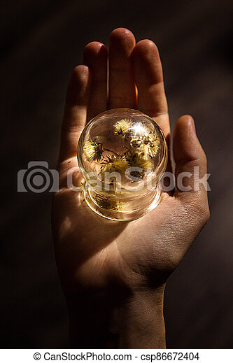 A wonderful wonderful world in the palm of your hand. A piece of nature under glass. The concept of a child's play with glass. - csp86672404