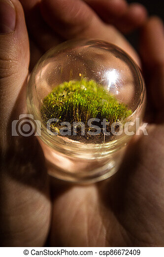 A wonderful wonderful world in the palm of your hand. A piece of nature under glass. The concept of a child's play with glass. Moss. - csp86672409