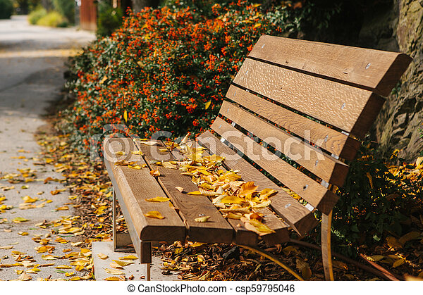 Swell A Wooden Bench In A Park With Yellow Foliage In Autumn Autumn Scene Pdpeps Interior Chair Design Pdpepsorg