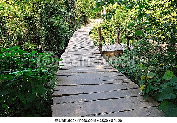 A wooden bridge on river - csp9707089