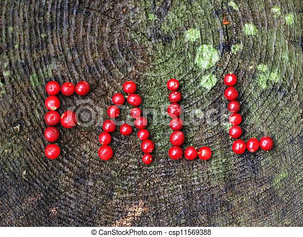 "A word ""fall"" - csp11569388"