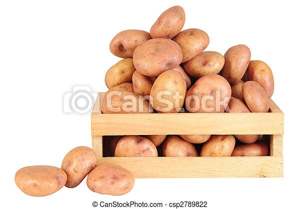 aardappels - csp2789822