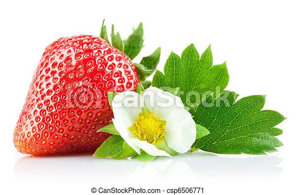 aardbei, bloem, blad, groene, bes - csp6506771