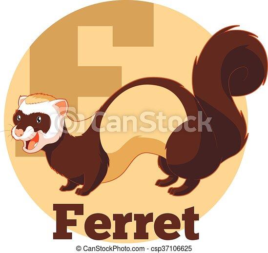 ABC Cartoon Ferret - csp37106625