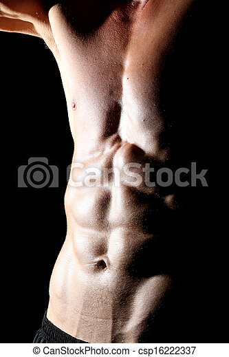 Abdominal muscles - csp16222337