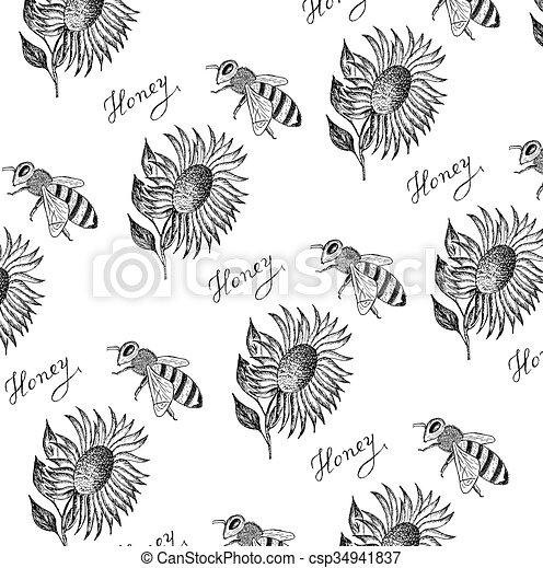 abeille miel - csp34941837
