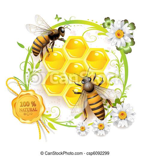 abeilles, deux, rayons miel - csp6092299