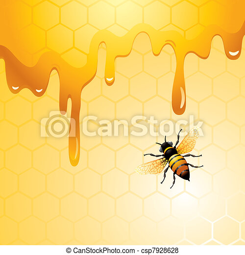 abelha, favo mel - csp7928628