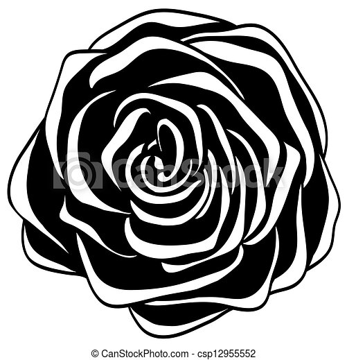 White Rose Illustrations And Clipart 62951 White Rose Royalty Free