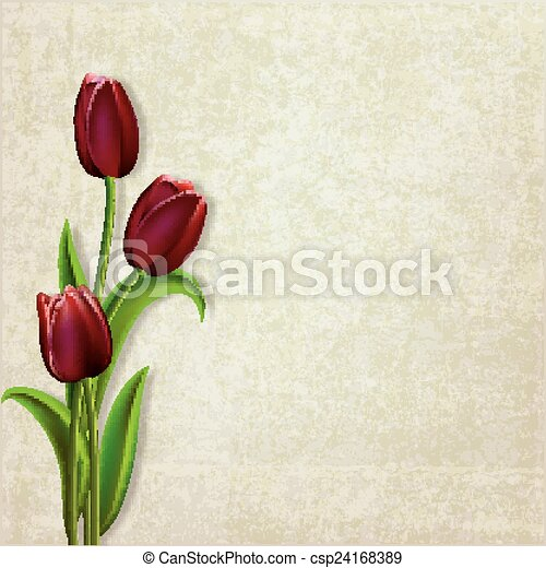abstract floral background with tulips - csp24168389