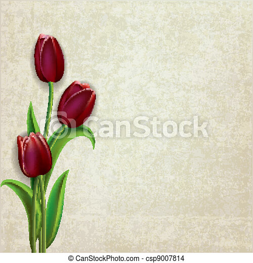 abstract floral background with tulips - csp9007814