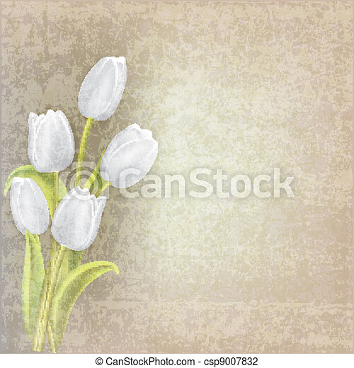 abstract floral background with tulips - csp9007832