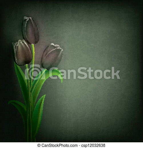 abstract grunge floral background with tulips - csp12032638