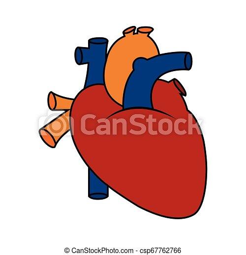 Abstract Human Heart