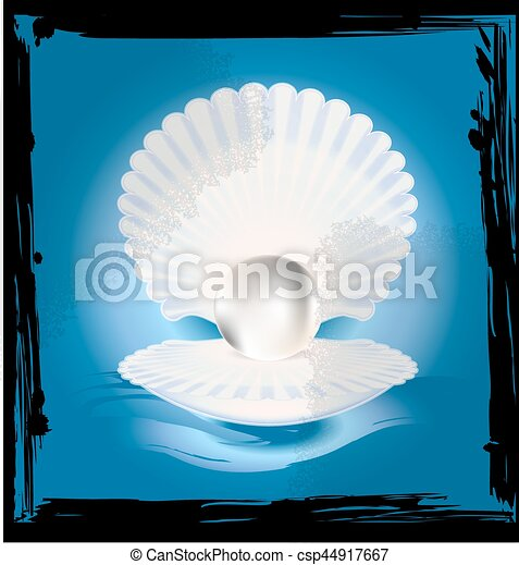 abstract image of shell