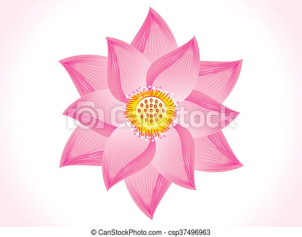 Abstract lotus flower abstract artistic lotus flower abstract lotus flower csp37496963 mightylinksfo