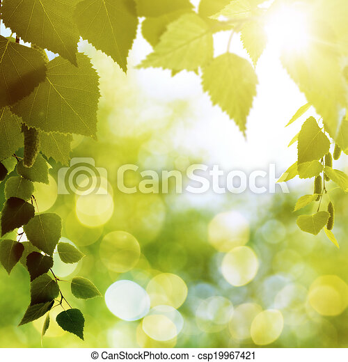 Abstract natural backgrounds with beauty bokeh - csp19967421