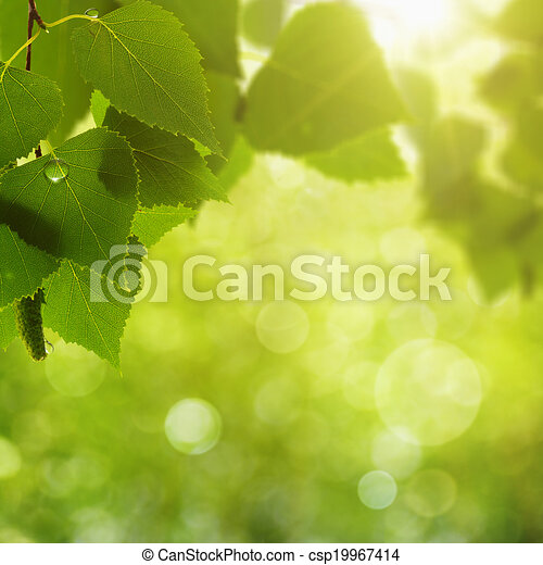 Abstract natural backgrounds with beauty bokeh - csp19967414