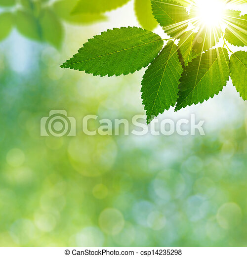 Abstract natural backgrounds with beauty bokeh - csp14235298