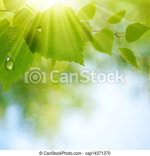 Abstract natural backgrounds with beauty bokeh - csp14371370