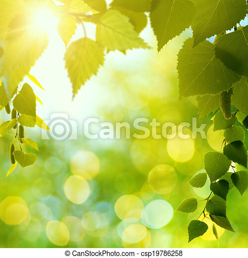 Abstract natural backgrounds with beauty bokeh - csp19786258