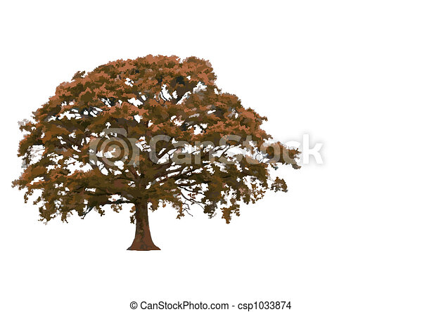 Abstract Oak Tree - csp1033874