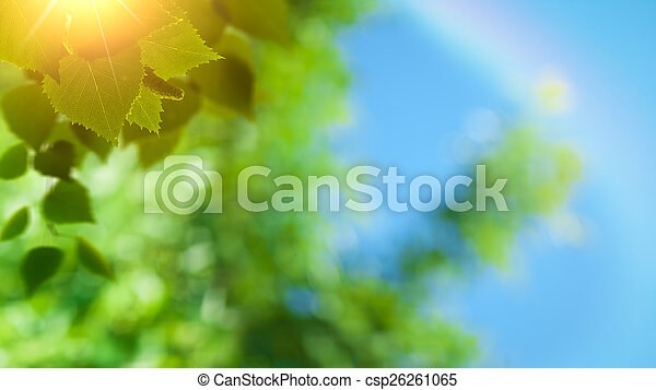 Abstract spring and summer natural backgrounds - csp26261065