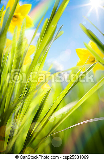 abstract spring background  - csp25331069