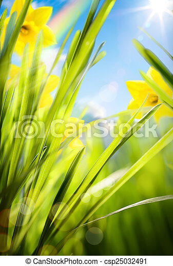 abstract spring background  - csp25032491