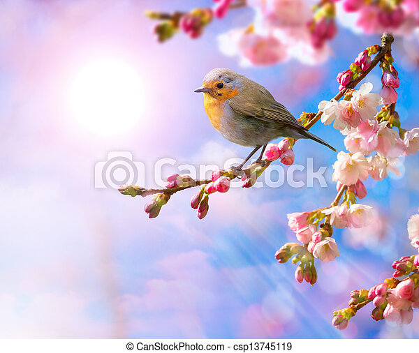 abstract Spring border background with pink blossom  - csp13745119