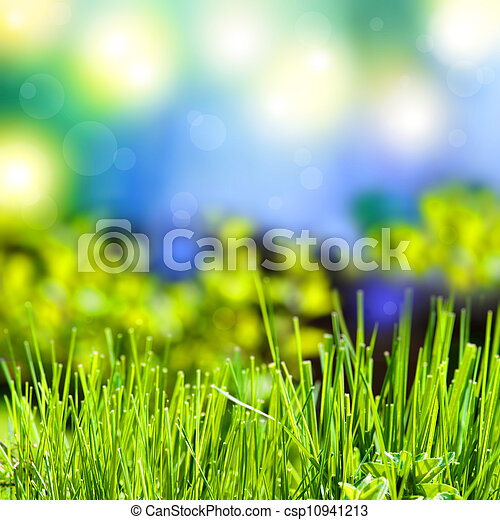 abstract summer background with grass - csp10941213