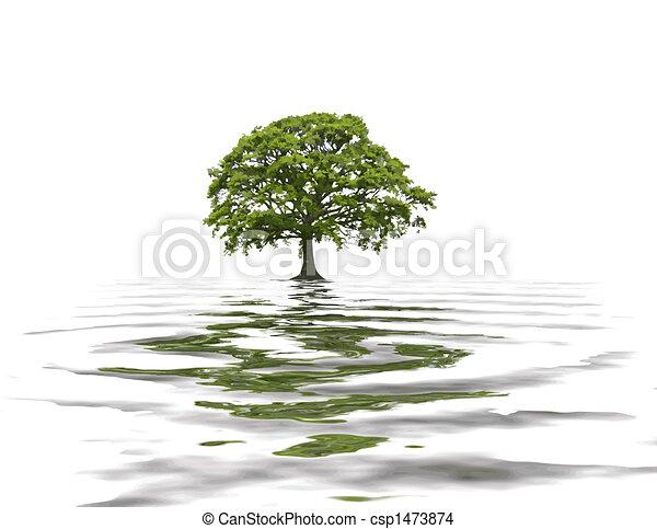 Abstract Summer Oak Tree - csp1473874