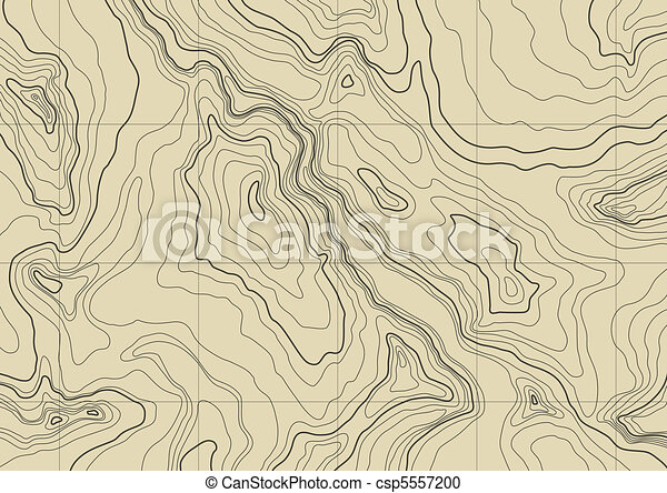Topographic Map Vector Free.Abstract Topographic Map In Brown Colors