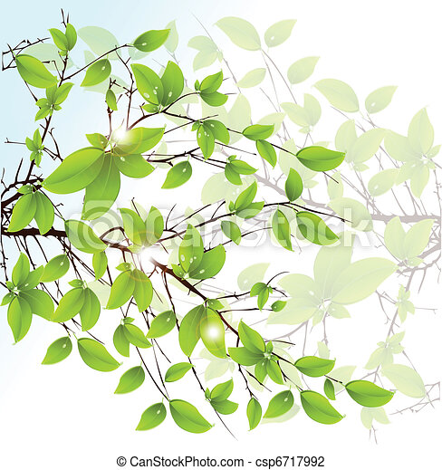 Abstract vector green leaves floral background. - csp6717992