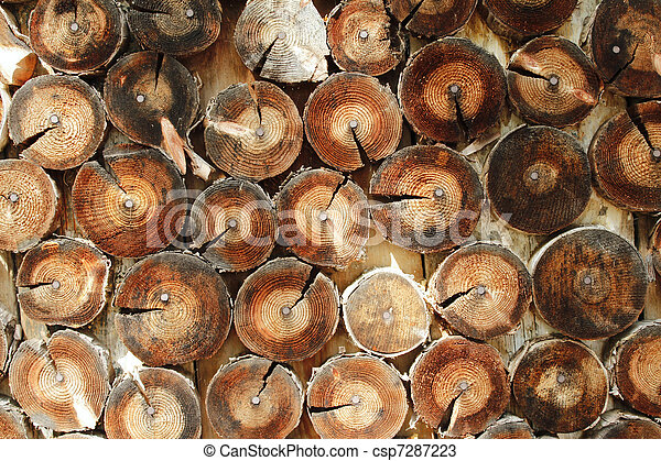 Abstract wood log background close- - csp7287223