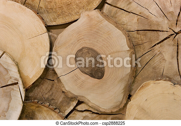 abstract wood log background close-up - csp2888225