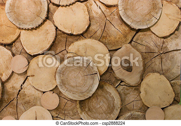 abstract wood log background close-up - csp2888224
