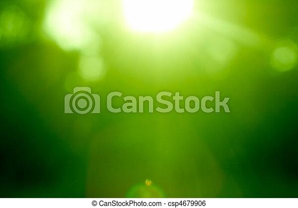 abstrakt, grønnes skov, defocused - csp4679906