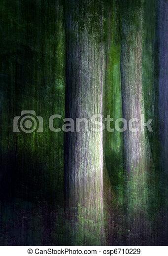abstratos, floresta - csp6710229