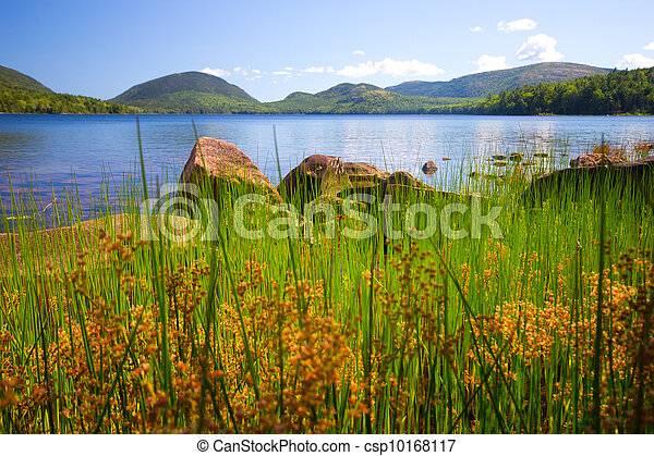 Acadia Lake Maine - csp10168117