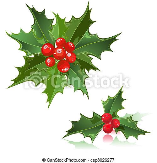 Acebo flor navidad baya ilustraci n con vectores - Imagenes flores de navidad ...